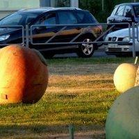 яблоки и автомобили :: Александр Прокудин