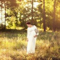 в лучах солнца :: Янина Гришкова