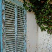 брошеный дом на Лазурном побережье :: Ольга Заметалова