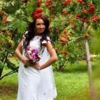 Невеста в рябине :: Владимир Бондарев