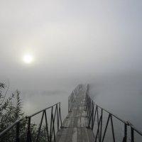 Утро туманное , утро седое . :: Мила Бовкун