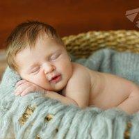"""Новорожденный малыш :: Первая Детская Фотостудия """"Арбат"""""""
