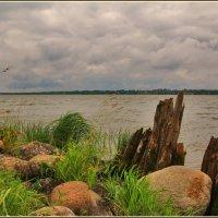 на Сиверском озере :: Дмитрий Анцыферов