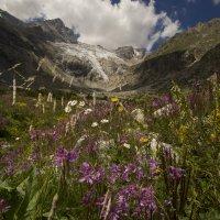 лето в горах :: Katrin Galitsina