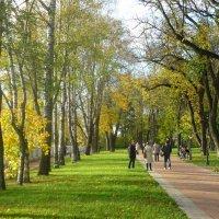 Парк культуры и отдыха. :: Александр Атаулин