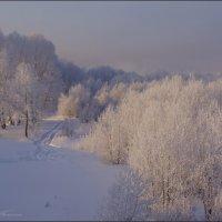 Морозец -40 :: Наталия Григорьева