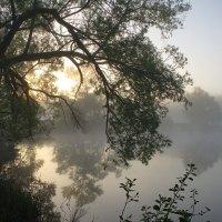 Туман , туман седая пелена.... :: Александр Буланов