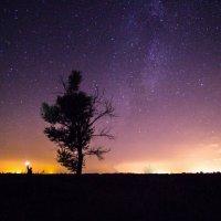 Человек и Звезды :: Никита Юдин