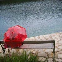 Дождь на острове Млет :: Женечка Зяленая