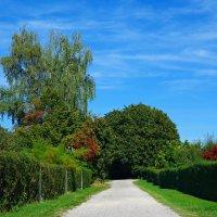 Между летом и осенью :: Galina Dzubina