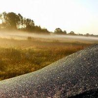 полог палатки в утренней росе :: Александр Прокудин