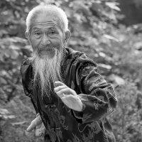 Шаолиньский монах :: Олег Патрин