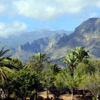 Mountains and palm trees. :: Valentina Severinova