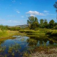 Весной была протока :: Евгений Герасименко
