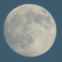 Луна в перигее(очередное суперлуние) :: Пётр Беркун