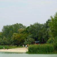 Отдых на берегу... :: Тамара (st.tamara)