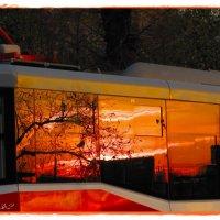 закатный трамвай :: Natalia Mihailova