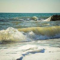 море :: Евгений Литвинов