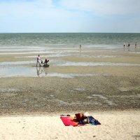 Море ушло, а вот развлечений  прибавилось :: Ирина Прохорченко