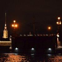 Разведённый Троицкий мост :: Наталья Левина