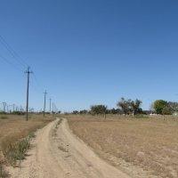 степная дорога :: Валерий A.
