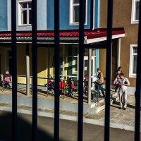 Детский сад. :: Валерий Молоток