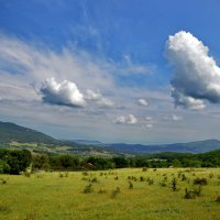 Облака- белогривые лошадки... :: Ольга Голубева