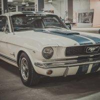 Muscle car show 2015 :: Sergei Babenko