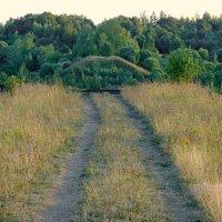 Несбывшиеся железная дорога и мост через Западную Двину (1). :: Сергей *Витебск*