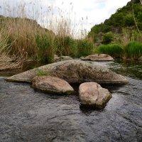Река и камни :: Мария