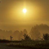 Туманный восход :: Александр