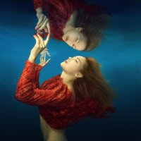 Mirror :: Дмитрий Лаудин