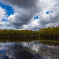 кажется дождь собирается... :: Сергей