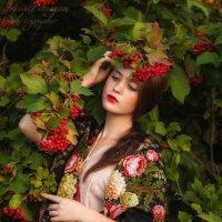Калина красная :: Irina Panaran