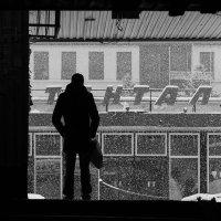 Снегопад :: Алексей Самошин