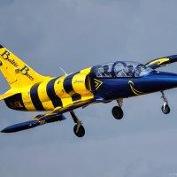 """Л-39 Альбатрос пилотажной группы """"Балтийские пчелы"""" :: Павел Myth Буканов"""