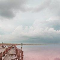 Розовое озеро :: Владимир ...