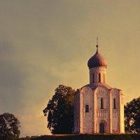 Храм Покрова на Нерли 9 :: Цветков Виктор Васильевич