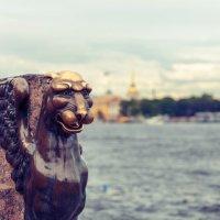 Прибрежный страж :: Евгений Никифоров