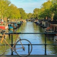 Amsterdam :: Alena Kramarenko