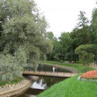 В Лопухинском саду :: Вера Щукина