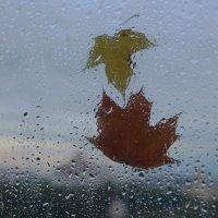 Дождь :: Любовь