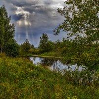 Конец августа 4 :: Андрей Дворников