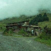 Туман спускается с гор :: Zifa Dimitrieva