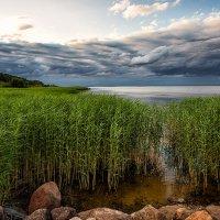 У озера :: Serge Riazanov