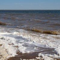 Осеннее озеро Большое Яровое :: Владимир Бондарев