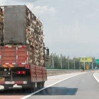 По дороге в Хэбей :: Анастасия Безуглая