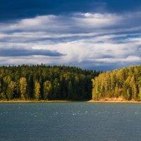 Летние берега :: Андрей Куприянов