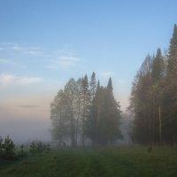 Весеннее утро :: Валентин Котляров
