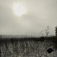 сквозь туман :: liudmila drake